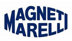 Magneti Marelli India Pvt Ltd