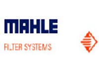 Mahle Filter Systems India Ltd