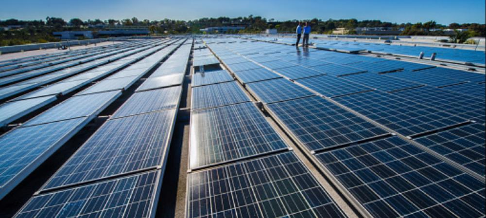 Why are global solar firms in a wait-and-watch mode in India?