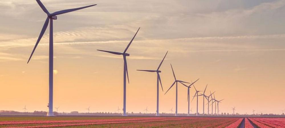 High drama unfolds in wind energy sector