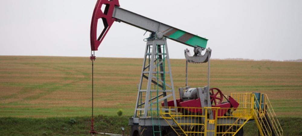 Why India's oil and gas auctions under new policy would be a success