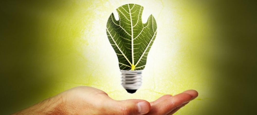 How India should address the challenge of utilizing biomass energy
