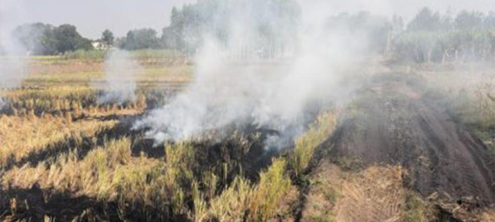 Comprehensive crop-residue management is needed to improve air quality