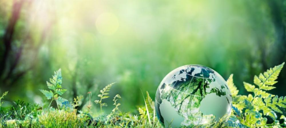 Earth Day 2019: A pledge for a sustainable future