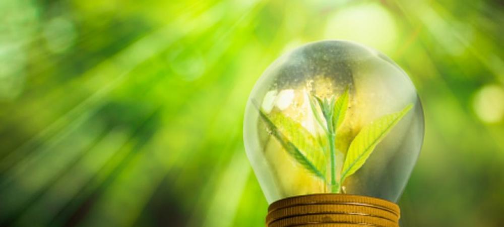 Ushering of circular bio-economy